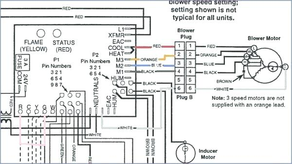 Bryant Furnace Thermostat For Furnace Schematic Installation