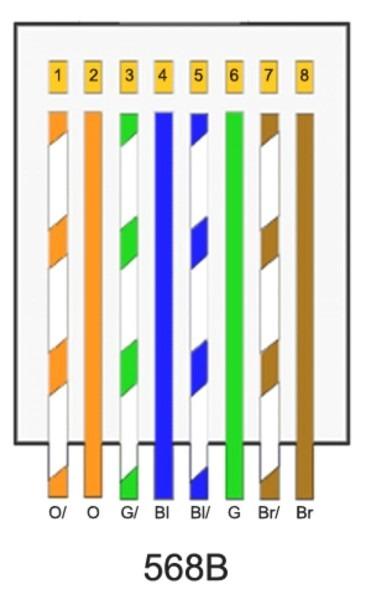 Cat 5b Wiring Diagram