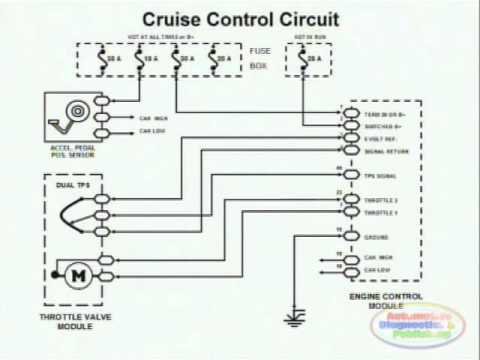 Cruise Control & Wiring Diagram