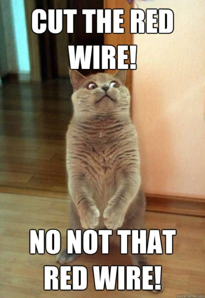 Cut The Red Wire! Cat Meme