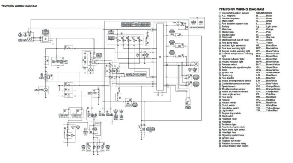 Grizzly 300 Wiring Diagram