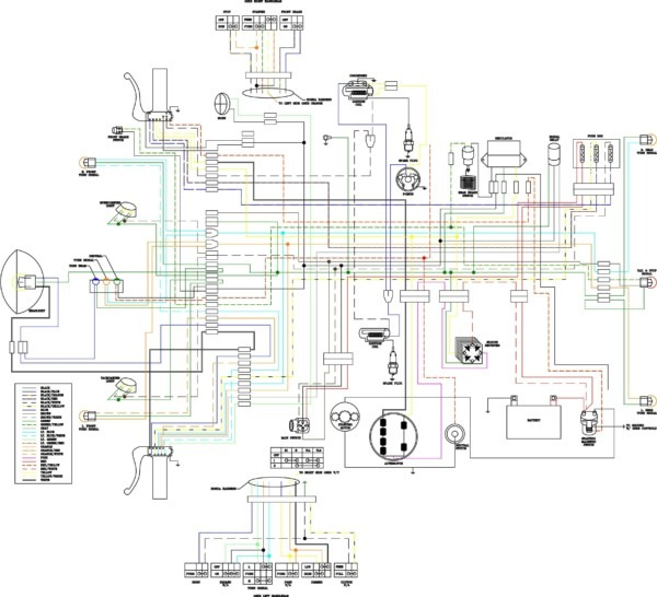 Peachy Honda Mt250 Wiring Diagram Wiring Diagram Database Wiring 101 Vieworaxxcnl
