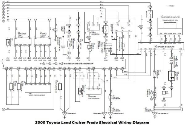 80 Series Toyota Land Cruiser Headlight Wiring Diagram