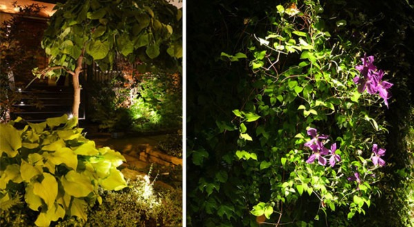 How To Light Your Landscape