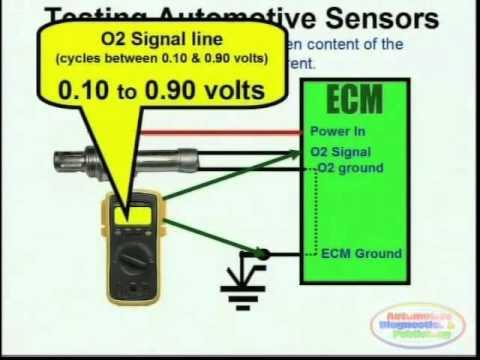O2 Sensor & Wiring Diagrams