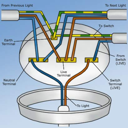 Wiring Up A Ceiling Light Too Many Wires!! Help