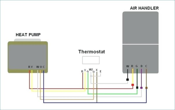 Diagram Of Animal Cell York Heat Pump Thermostat Wiring With Net