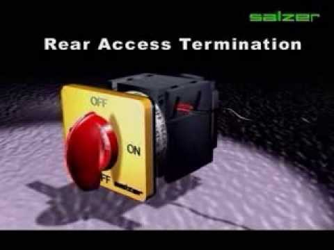 Salzer Switches