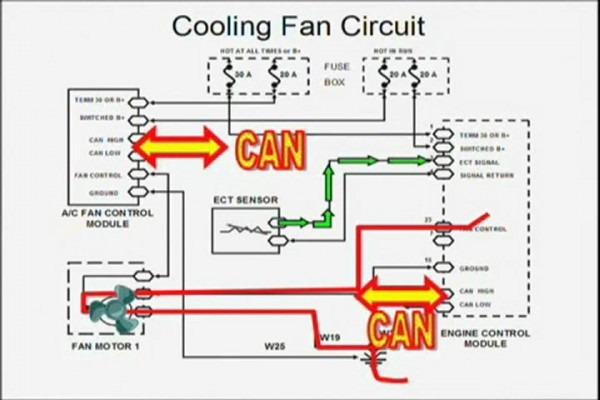 Cooling Fan  Cooling Fan Wiring Harness