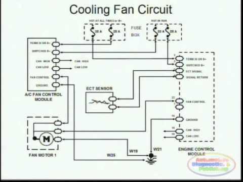 Horton Wiring Diagram