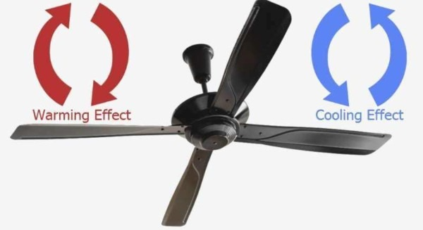 How To Change Out A Ceiling Fan Fancy Ceiling Fans When And How To