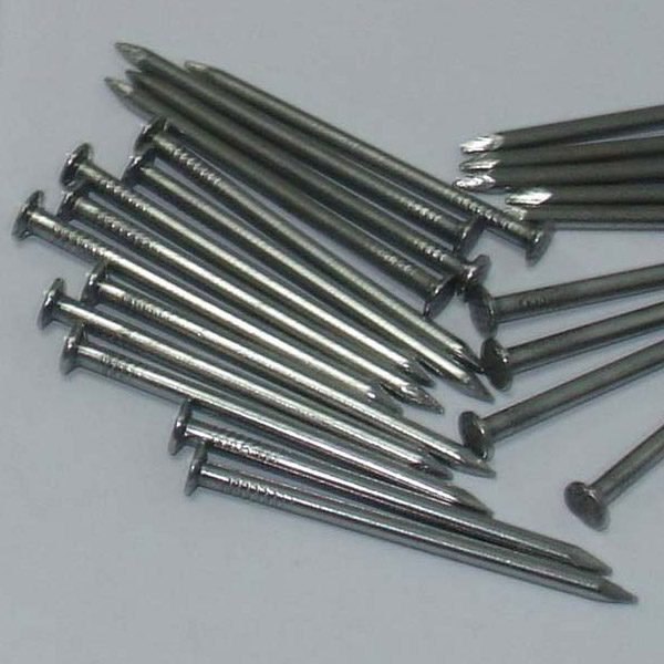 Common Wire Nail
