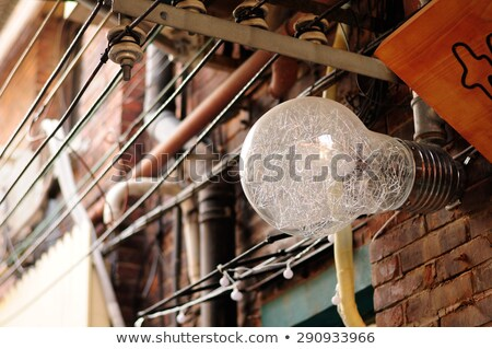 Large Light Bulb Old Style Wiring Stock Photo (edit Now) 290933966