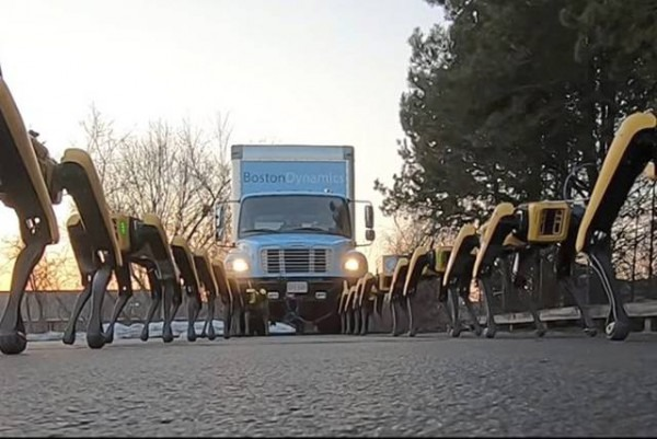 Watch  Pack Of Boston Dynamics Robot Dogs Pulls Truck